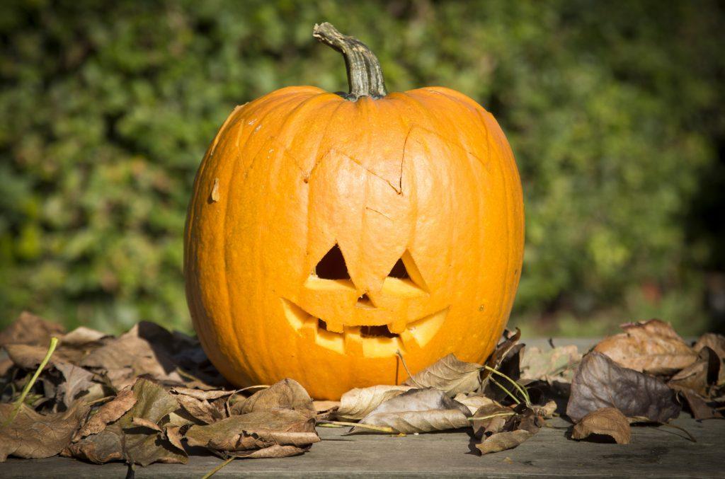 Kreativ halloween gör själv pumpalykta med utskärning